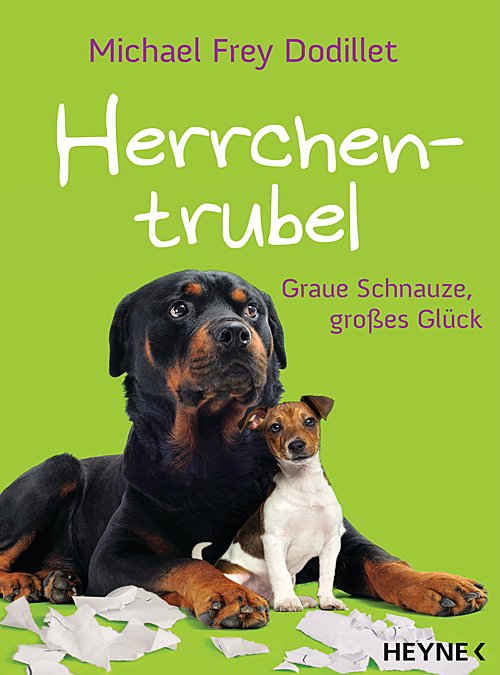 goodfellows-herrchentrubel-cover