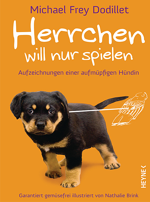 goodfellows-herrchenwillnurspielen-cover