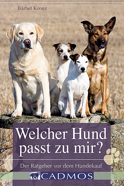 goodfellows-hundekauf-blog
