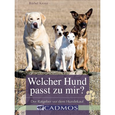 goodfellows-hundekauf-teaser