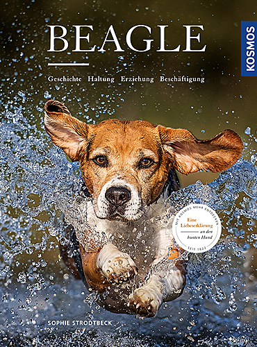 goodfellows-beagle-blog